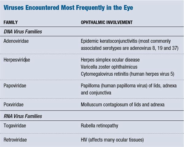 Tiny Viruses, Major Diseases