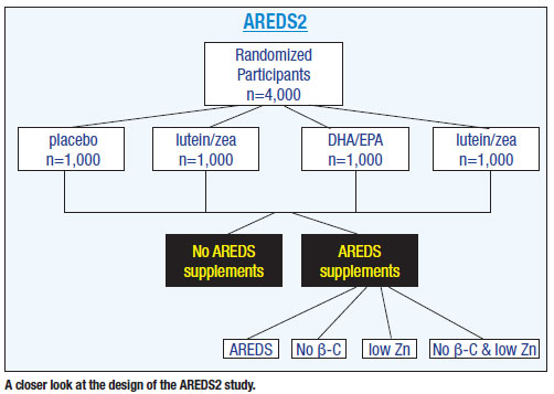 A closer look at the design of the AREDS2 study.